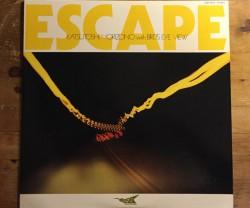 katsutoshi morizono (森園勝敏)  with bird's eye view  / escape LP