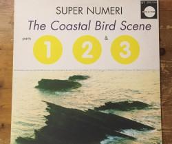 """super numeri  / coastal bird scene parts 1,2&3 12"""""""