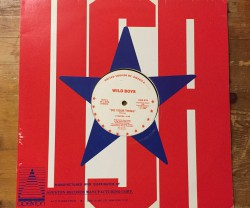 wild boys / do your thing 12""
