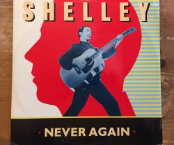 pete shelley / never again 12""