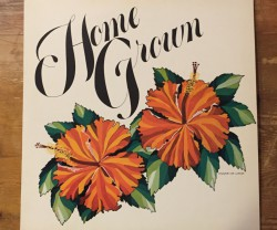 v.a. / home grown Ⅱ LP