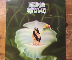 v.a. / home grown Ⅰ LP