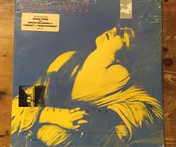 michael shrieve & steve roach  / the leaving time LP