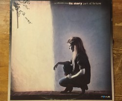 liz story / part of fortune LP