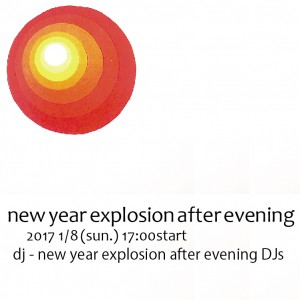 2017-1-8new-year-evening